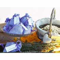 Box lavande bleue de Provence